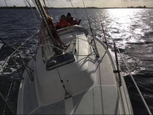Contest Yachts 25