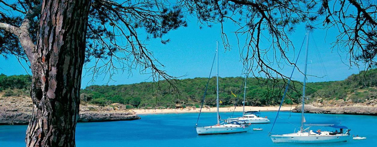 Confianza Yachting Mallorca S.L. Foto 2